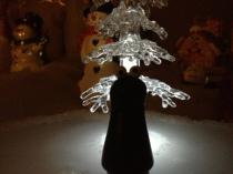 Cookie Tree Night